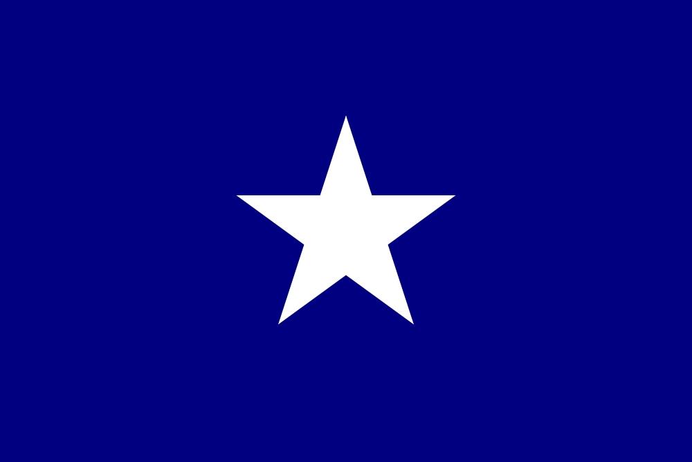Milledge L Bonham Jr The Flags Of Louisiana