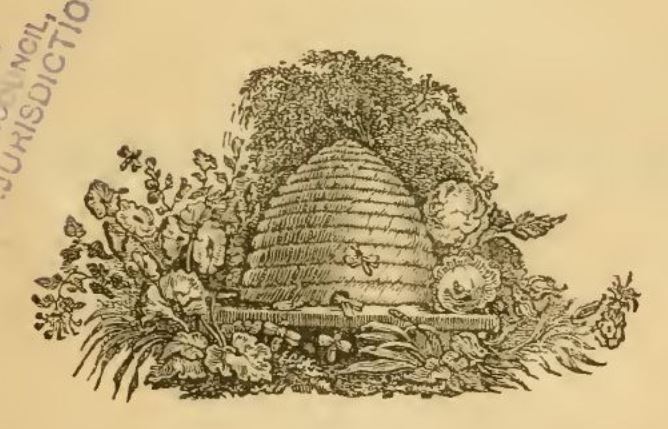 """Thomas Bangs Thorpe  """"Hive of the Bee Hunter """""""